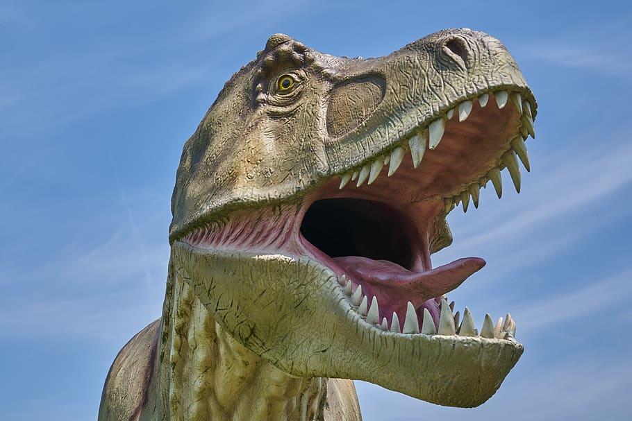 Cómo era el Tiranosaurio Rex