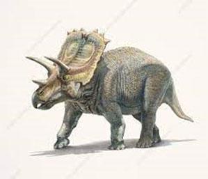 Dinosaurios con cuernos en la cabeza; Anchiceratops