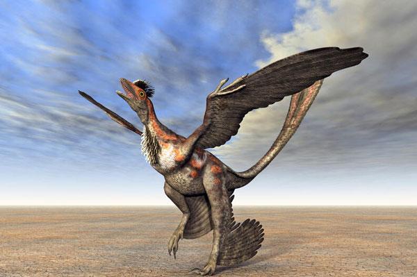 Dinosaurios con plumas - Microraptor