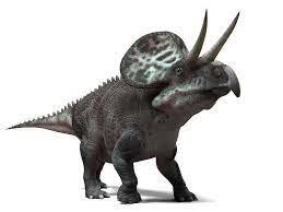 Dinosaurios con cuernos en la nariz y en los ojos: Zuniceratops