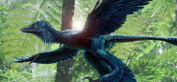 dinosaurios aves